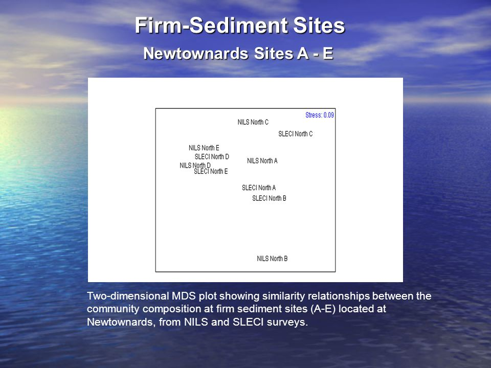 Firm-Sediment Sites Newtownards Sites A - E Two-dimensional MDS plot showing similarity relationships between the community composition at firm sediment sites (A-E) located at Newtownards, from NILS and SLECI surveys.