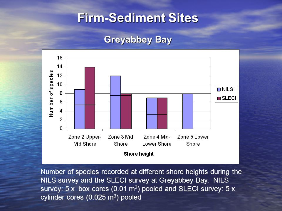 Number of species recorded at different shore heights during the NILS survey and the SLECI survey at Greyabbey Bay.