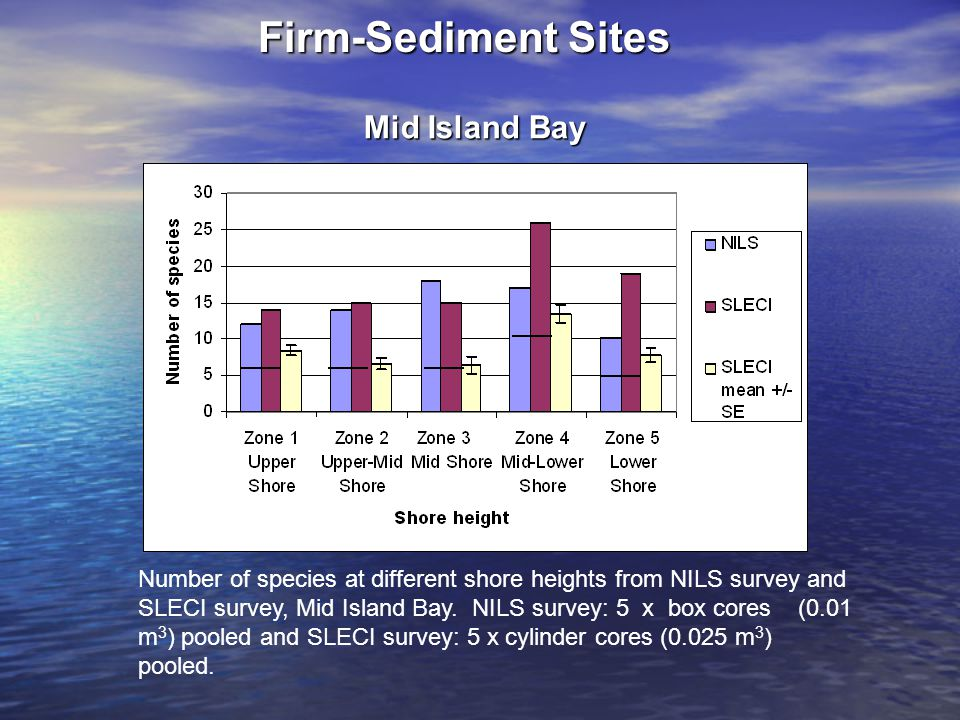 Firm-Sediment Sites Number of species at different shore heights from NILS survey and SLECI survey, Mid Island Bay. NILS survey: 5 x box cores (0.01 m