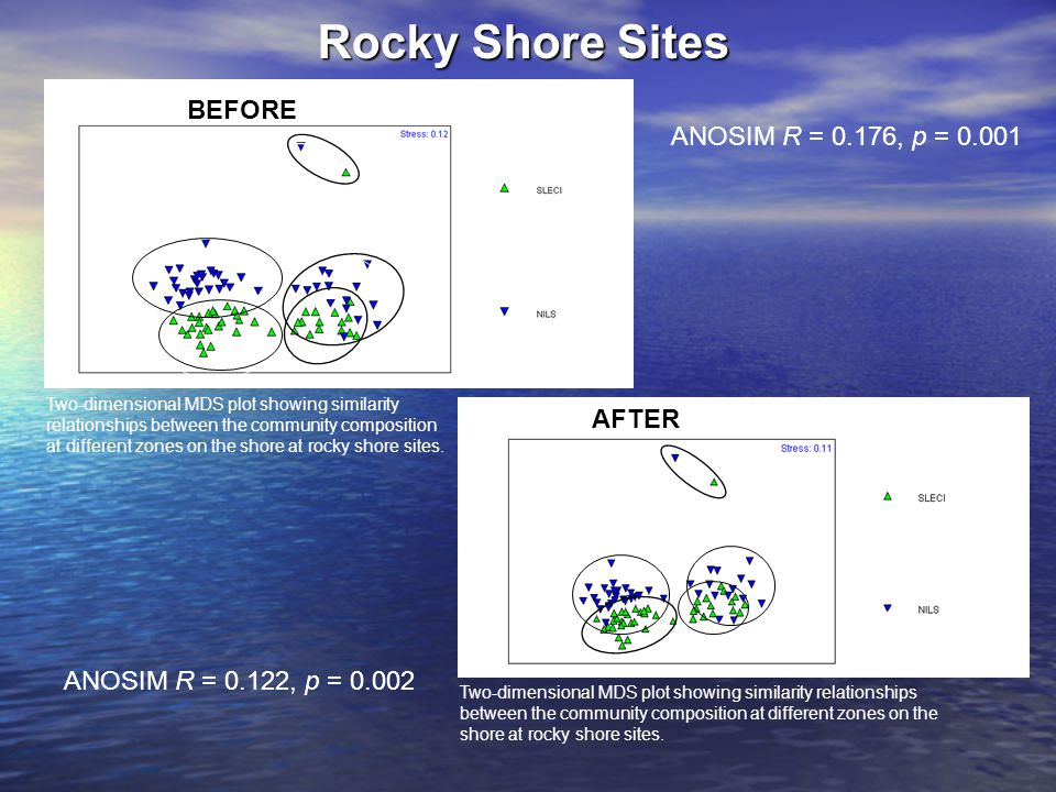 Rocky Shore Sites ANOSIM R = 0.176, p = 0.001 Two-dimensional MDS plot showing similarity relationships between the community composition at different
