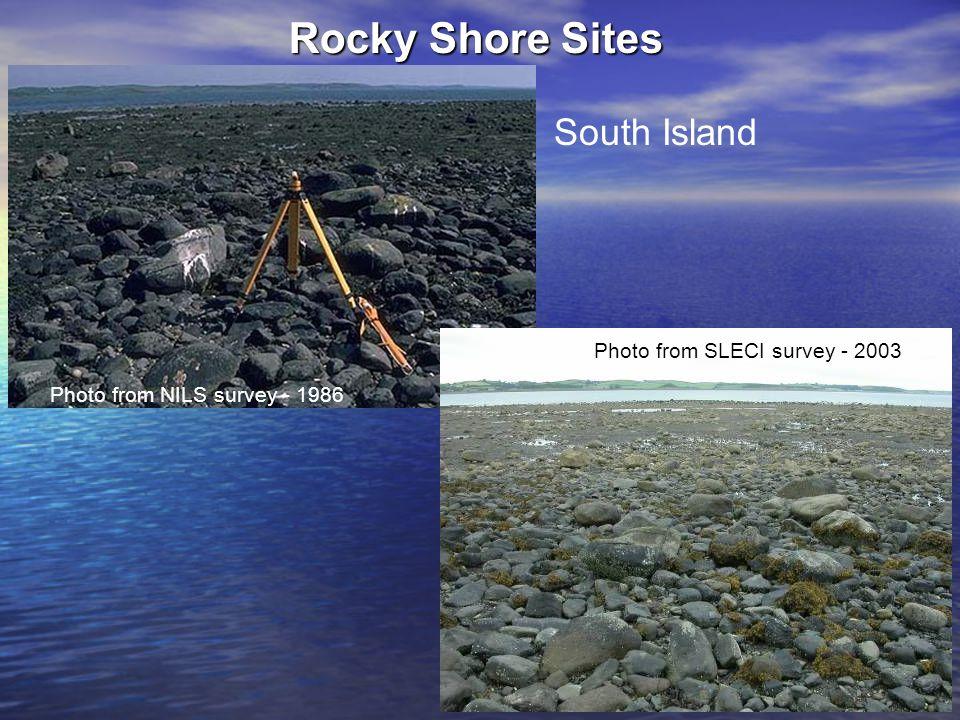 Rocky Shore Sites South Island Photo from NILS survey - 1986 Photo from SLECI survey - 2003