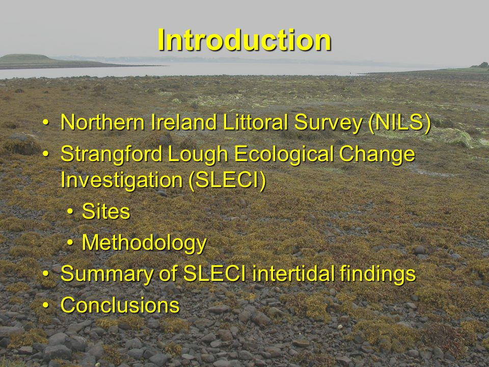 Introduction Northern Ireland Littoral Survey (NILS)Northern Ireland Littoral Survey (NILS) Strangford Lough Ecological Change Investigation (SLECI)Strangford Lough Ecological Change Investigation (SLECI) SitesSites MethodologyMethodology Summary of SLECI intertidal findingsSummary of SLECI intertidal findings ConclusionsConclusions