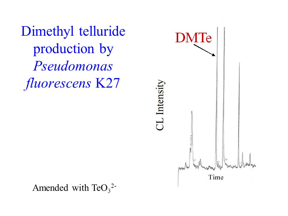 Dimethyl telluride production by Pseudomonas fluorescens K27 Amended with TeO 3 2-