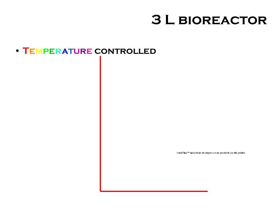 3 L bioreactor Temperature controlled