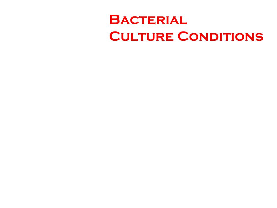 Bacterial Culture Conditions