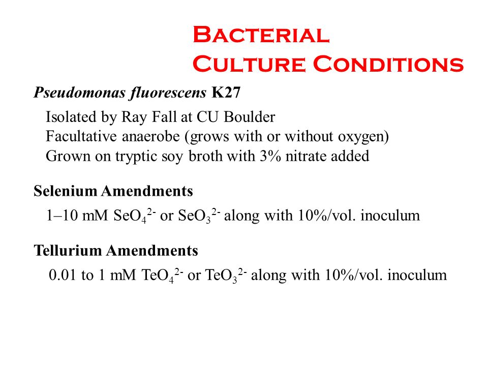 Bacterial Culture Conditions Pseudomonas fluorescens K27 Isolated by Ray Fall at CU Boulder Facultative anaerobe (grows with or without oxygen) Grown on tryptic soy broth with 3% nitrate added Selenium Amendments 1–10 mM SeO 4 2- or SeO 3 2- along with 10%/vol.