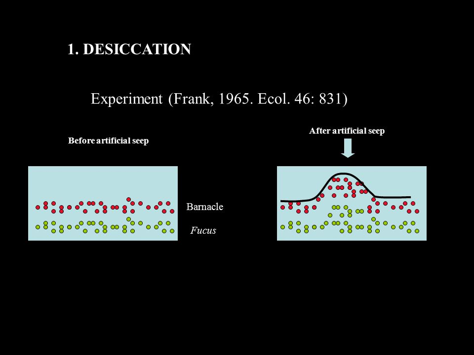1. DESICCATION Experiment (Frank, 1965. Ecol. 46: 831) After artificial seep Barnacle Fucus Before artificial seep