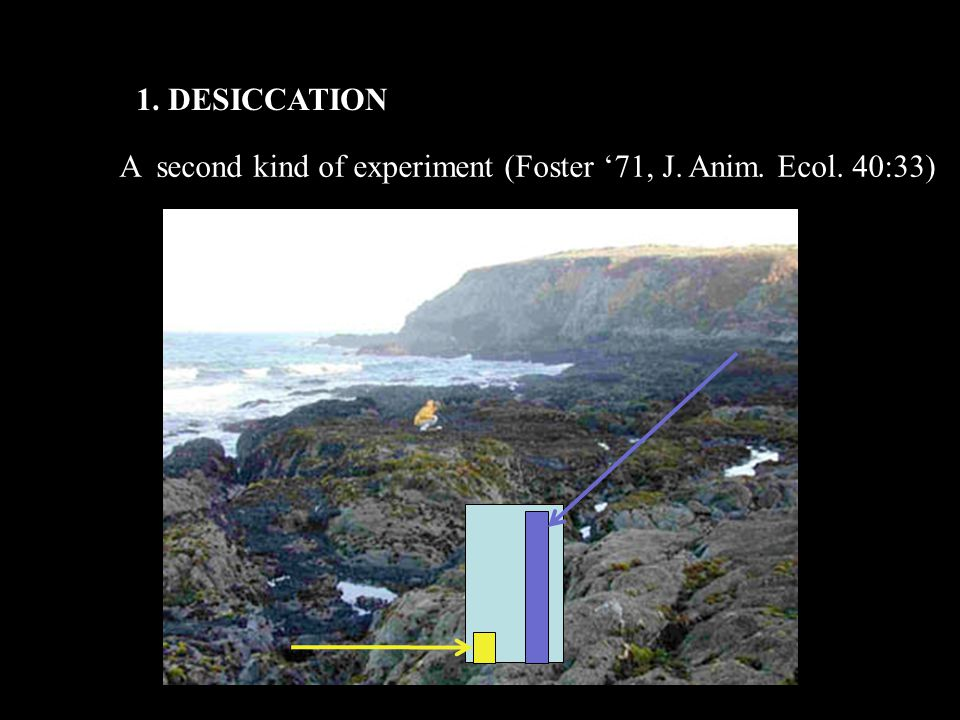 1. DESICCATION A second kind of experiment (Foster '71, J. Anim. Ecol. 40:33)