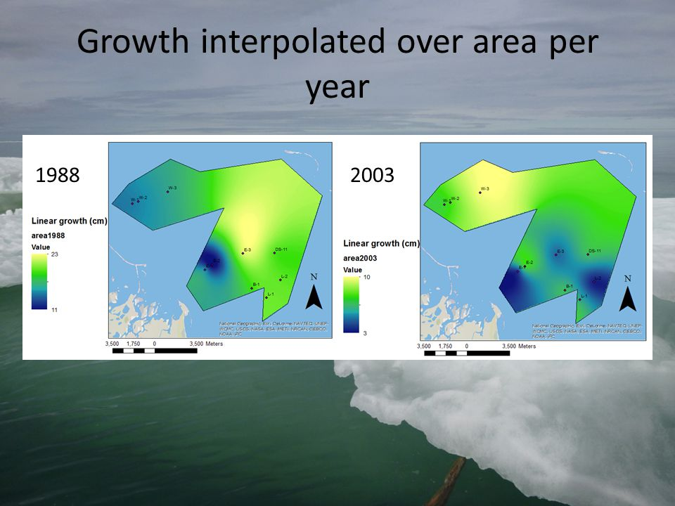 Growth interpolated over area per year 19882003