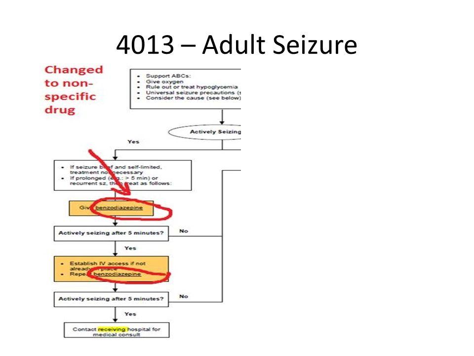 4013 – Adult Seizure