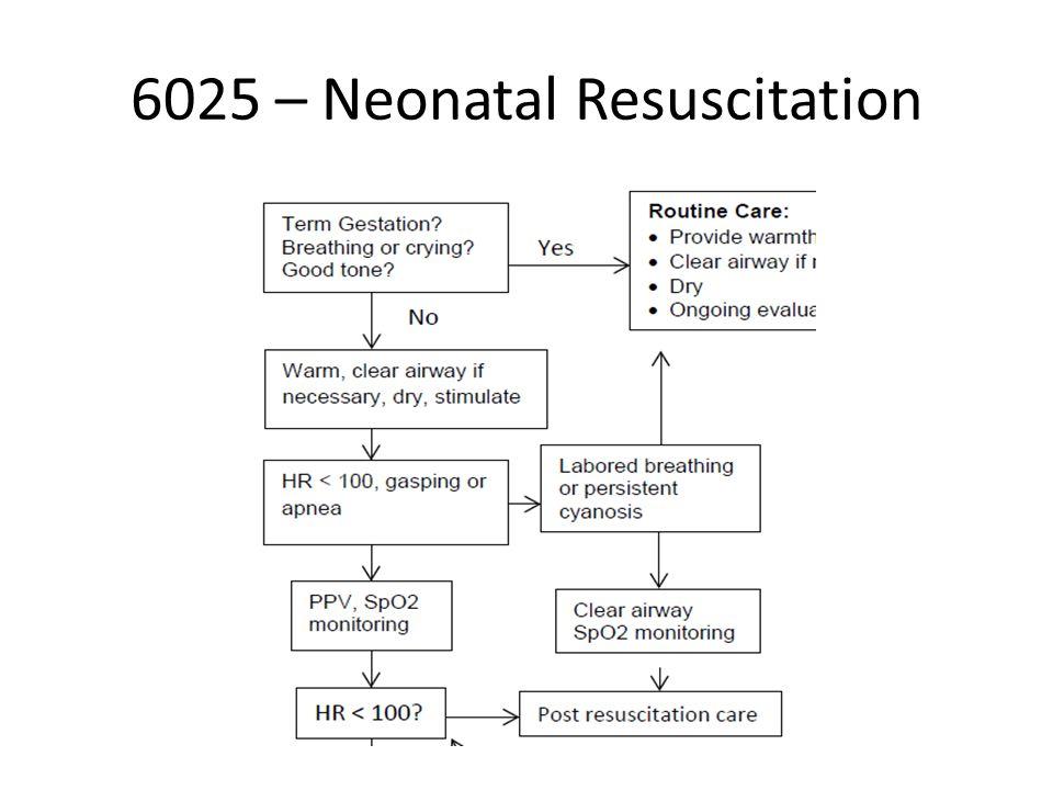 6025 – Neonatal Resuscitation