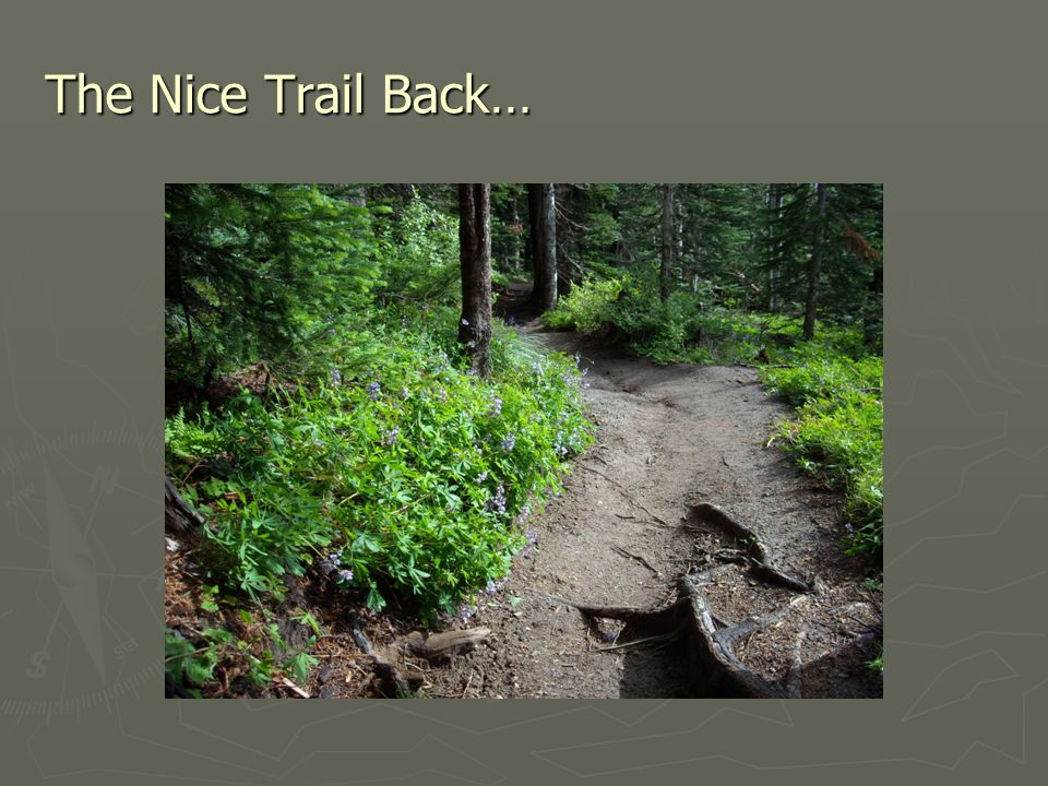 The Nice Trail Back…
