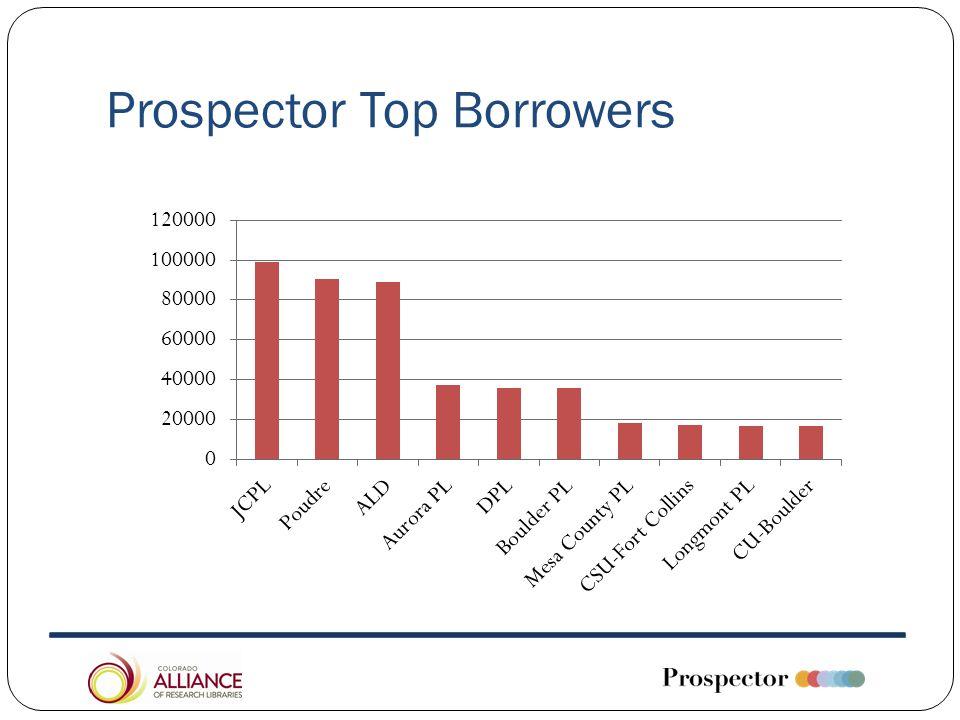 Prospector Top Borrowers