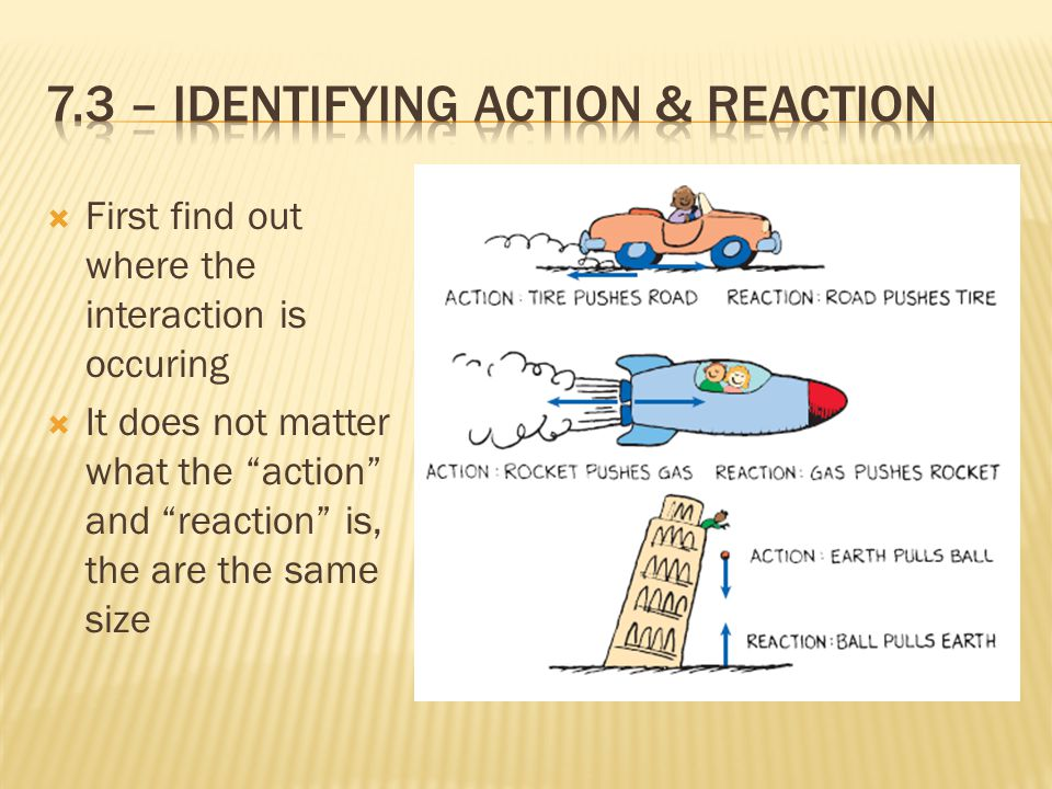 """ First find out where the interaction is occuring  It does not matter what the """"action"""" and """"reaction"""" is, the are the same size"""