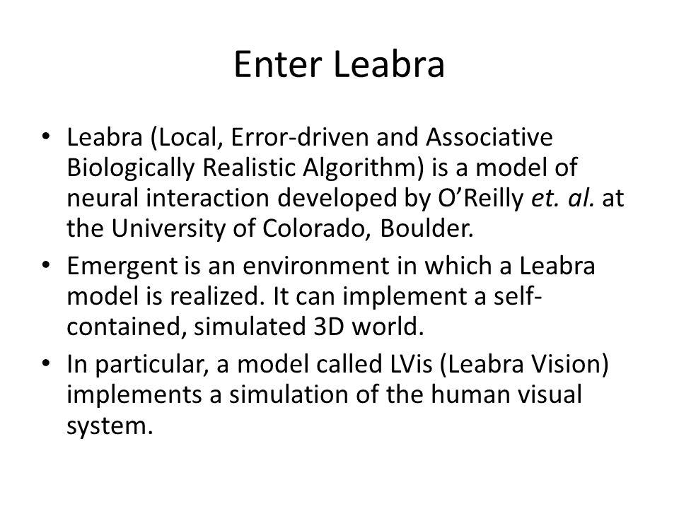 The Leabra Vision Model