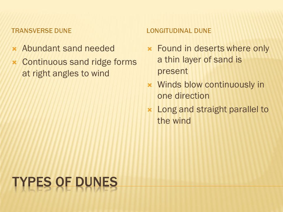 TRANSVERSE DUNELONGITUDINAL DUNE  Abundant sand needed  Continuous sand ridge forms at right angles to wind  Found in deserts where only a thin layer of sand is present  Winds blow continuously in one direction  Long and straight parallel to the wind