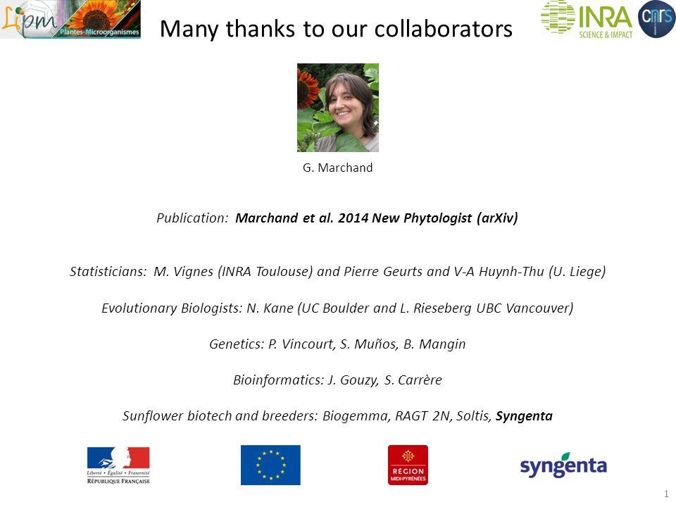 Many thanks to our collaborators Publication: Marchand et al.