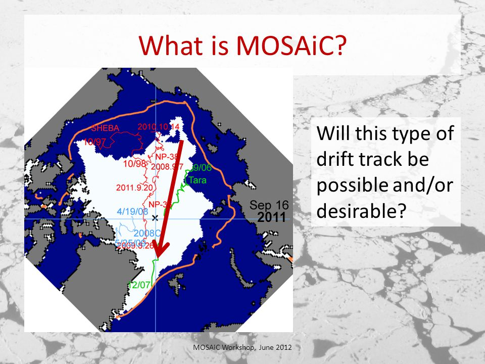 What is MOSAiC.