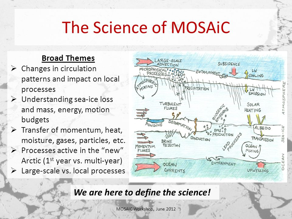 The Science of MOSAiC MOSAiC Workshop, June 2012 Broad Themes  Changes in circulation patterns and impact on local processes  Understanding sea-ice loss and mass, energy, motion budgets  Transfer of momentum, heat, moisture, gases, particles, etc.