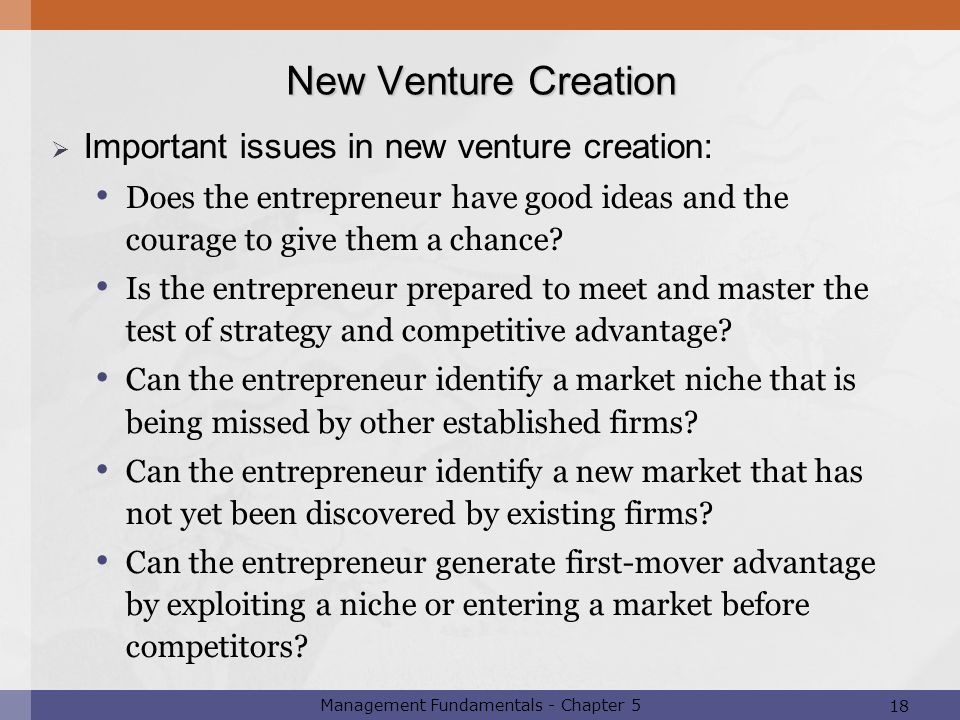 18 Management Fundamentals - Chapter 5  Important issues in new venture creation: Does the entrepreneur have good ideas and the courage to give them