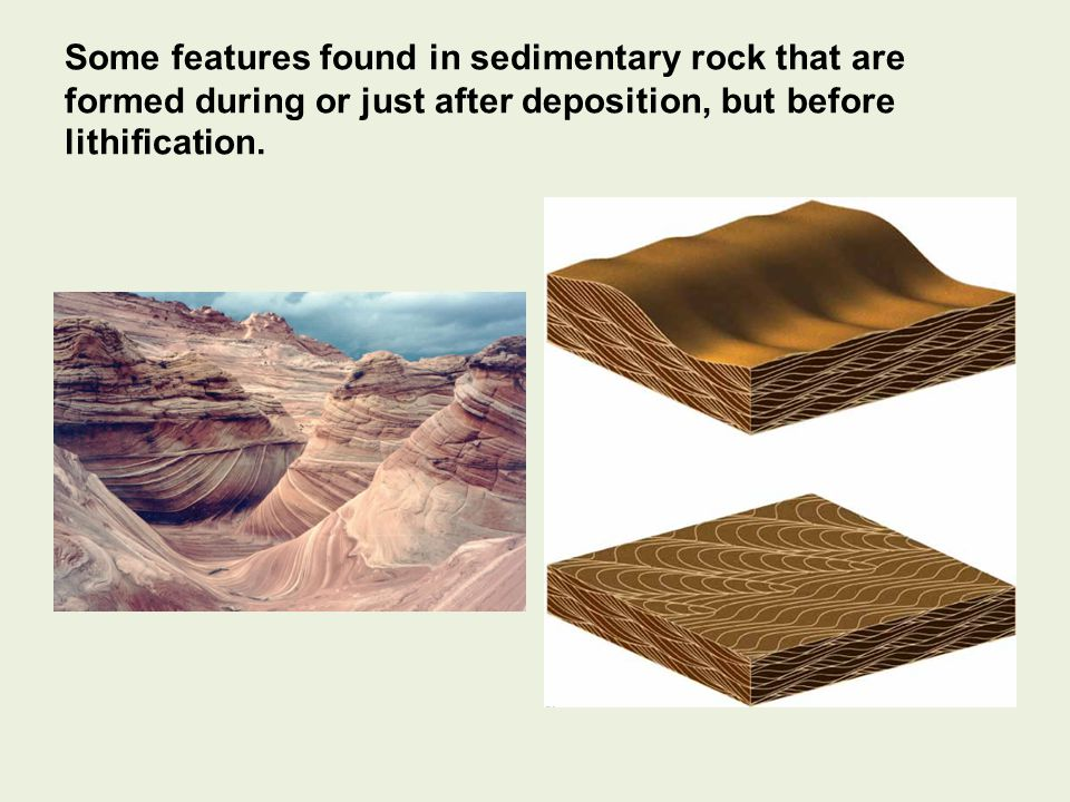 Some features found in sedimentary rock that are formed during or just after deposition, but before lithification.