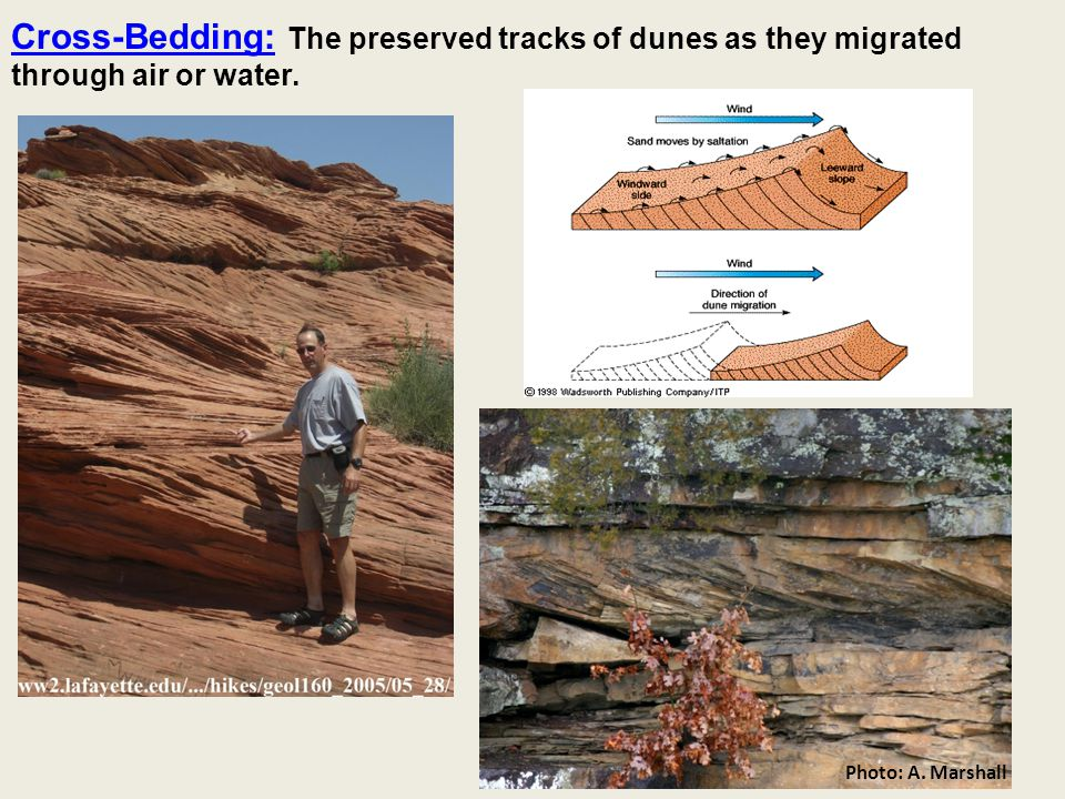 Cross-Bedding: The preserved tracks of dunes as they migrated through air or water. Photo: A. Marshall