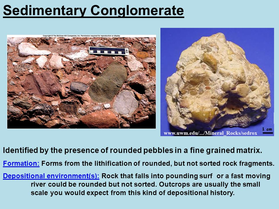 Sedimentary Conglomerate Identified by the presence of rounded pebbles in a fine grained matrix. Formation: Forms from the lithification of rounded, b