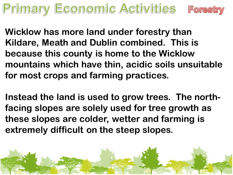Wicklow has more land under forestry than Kildare, Meath and Dublin combined.