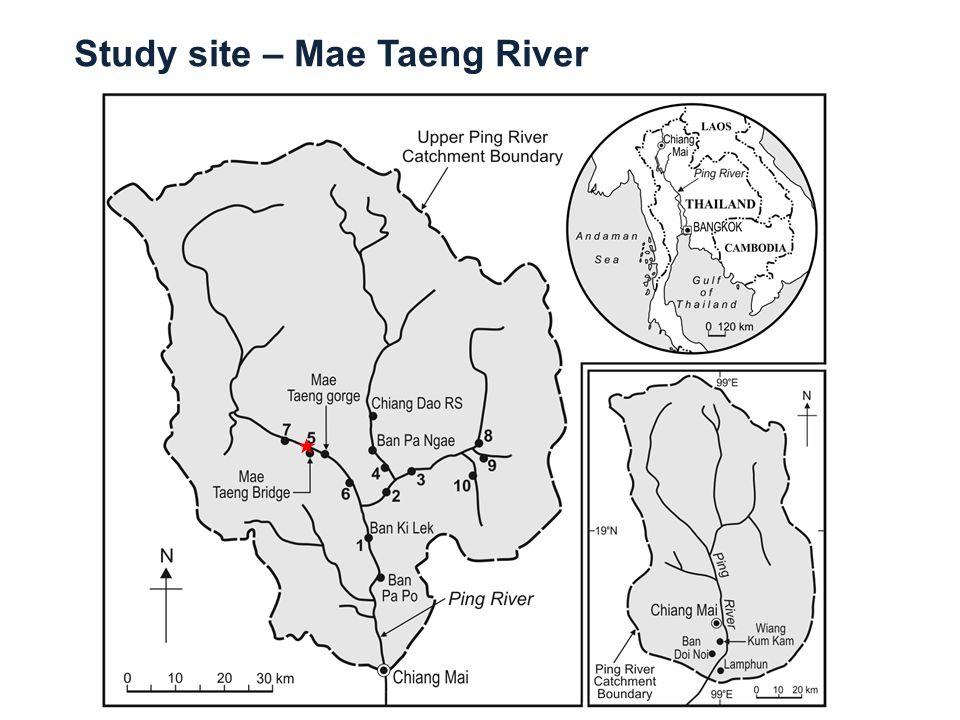 Study site – Mae Taeng River
