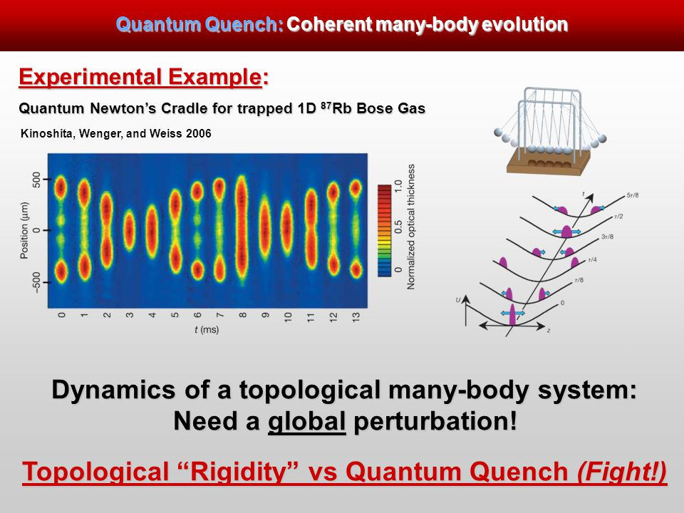 Experimental Example: Quantum Newton's Cradle for trapped 1D 87 Rb Bose Gas Dynamics of a topological many-body system: Need a global perturbation.