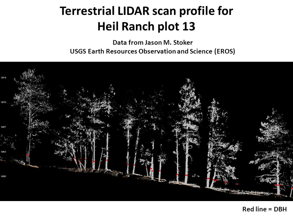Red line = DBH Terrestrial LIDAR scan profile for Heil Ranch plot 13 Data from Jason M.