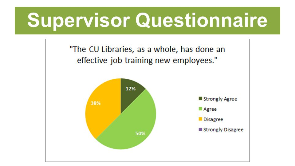 Supervisor Questionnaire
