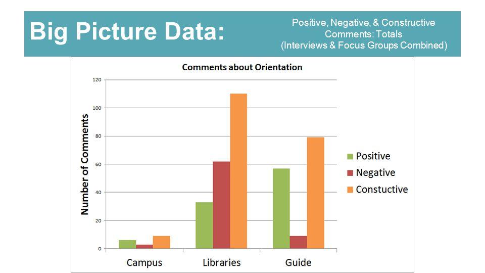 Big Picture Data: Positive, Negative, & Constructive Comments: Totals (Interviews & Focus Groups Combined)