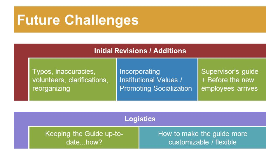 Future Challenges Initial Revisions / Additions Incorporating Institutional Values / Promoting Socialization How to make the guide more customizable /