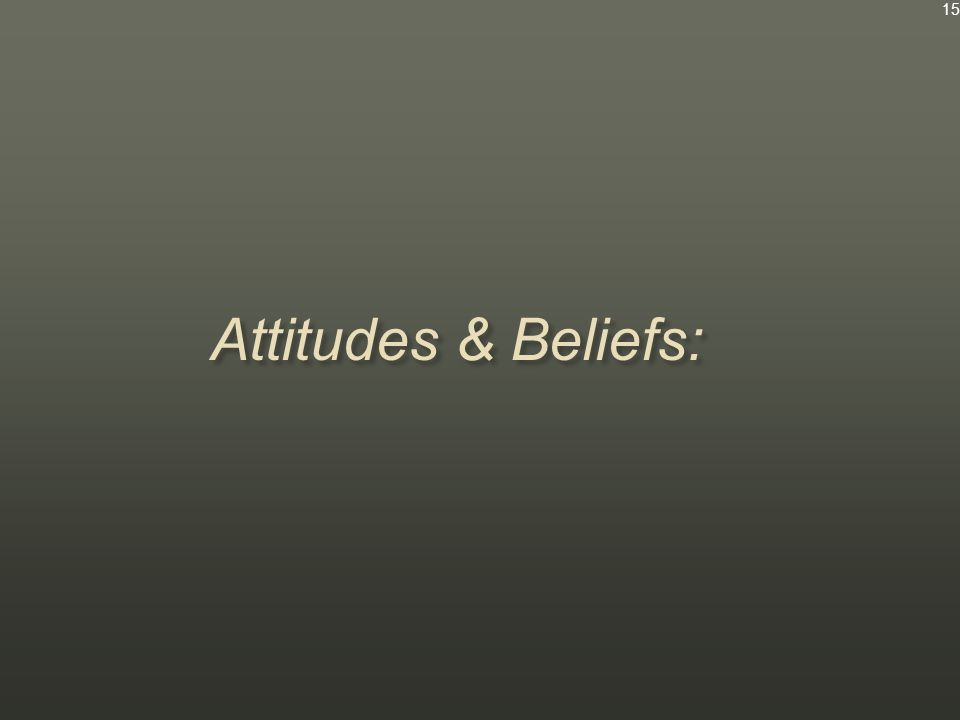 Attitudes & Beliefs: 15