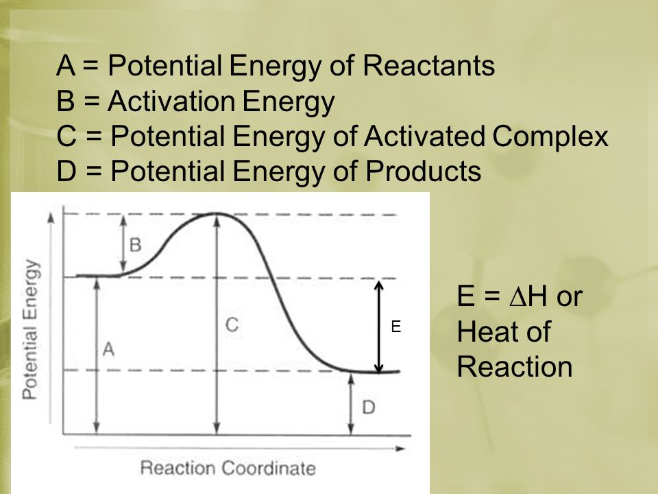 A = Potential Energy of Reactants B = Activation Energy C = Potential Energy of Activated Complex D = Potential Energy of Products E E = ∆H or Heat of Reaction