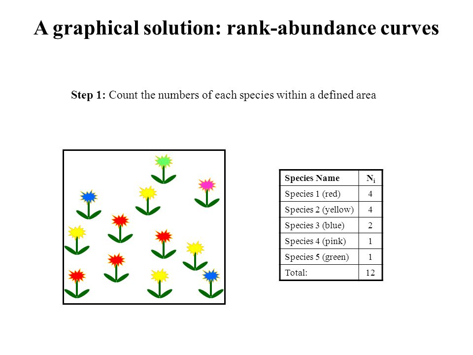 A graphical solution: rank-abundance curves Species NameNiNi Species 1 (red)4 Species 2 (yellow)4 Species 3 (blue)2 Species 4 (pink)1 Species 5 (green)1 Total:12 Step 1: Count the numbers of each species within a defined area