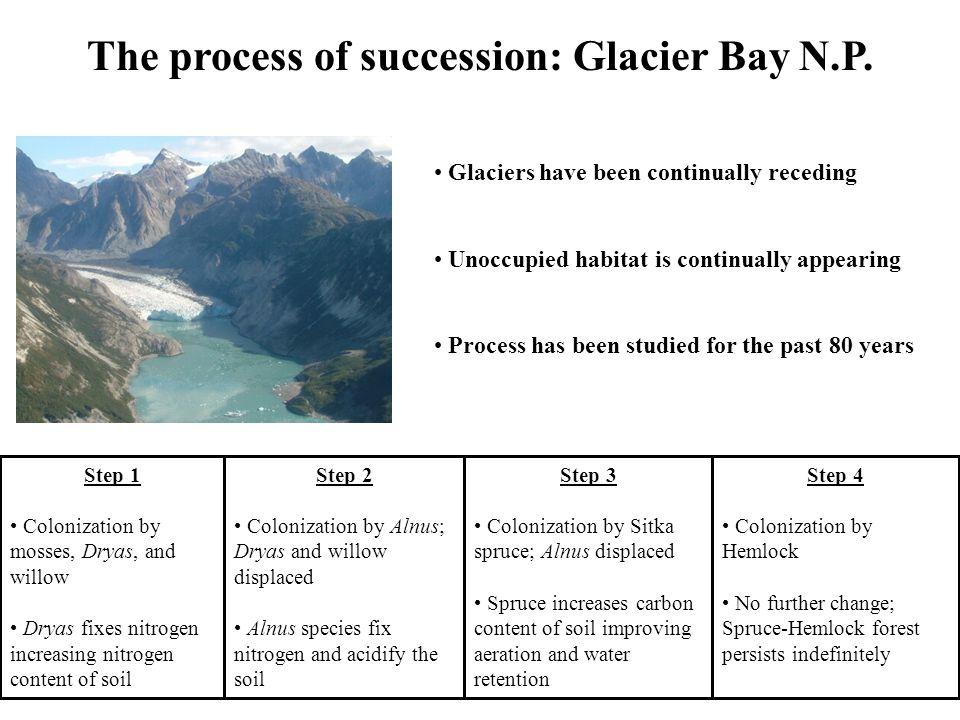 The process of succession: Glacier Bay N.P.