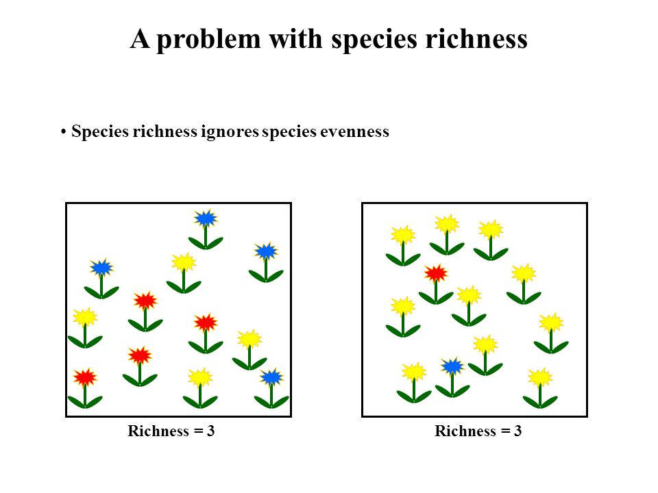 How can species evenness be incorporated.