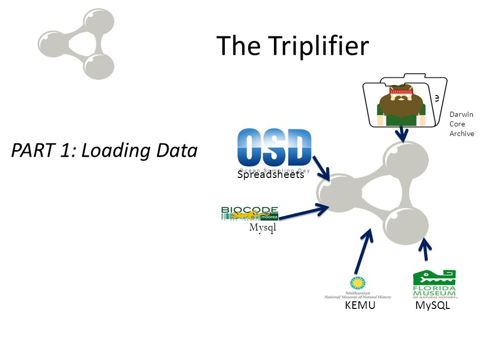 The Triplifier PART 1: Loading Data MySQL Darwin Core Archive Mysql Darwin Core Archive KEMU Spreadsheets
