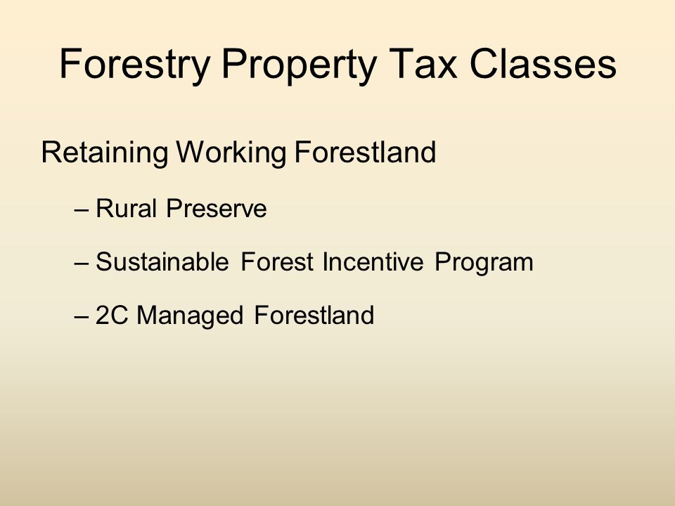 Forestry Property Tax Classes Retaining Working Forestland –Rural Preserve –Sustainable Forest Incentive Program –2C Managed Forestland