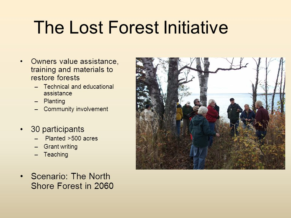 The Lost Forest Initiative Community Meeting –May 11, 12:30 PM –Wolf Ridge Tour of the forest How to get involved