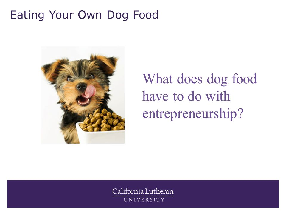 Eating Your Own Dog Food What does dog food have to do with entrepreneurship