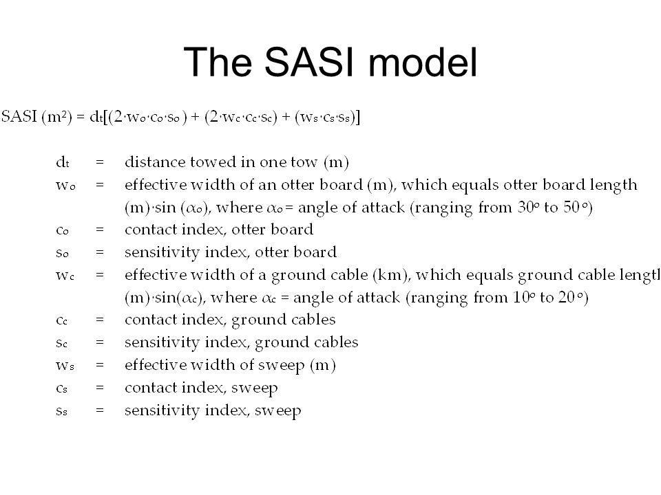 The SASI model