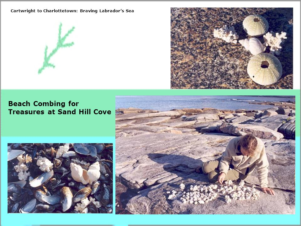 Beach Combing for Treasures at Sand Hill Cove Cartwright to Charlottetown: Braving Labrador's Sea