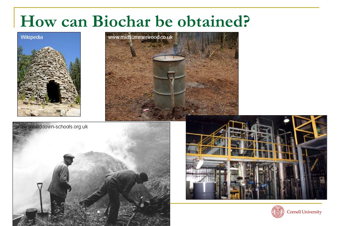 How can Biochar be obtained? www.midsummerwood.co.uk www.wealddown-schools.org.uk Wikipedia