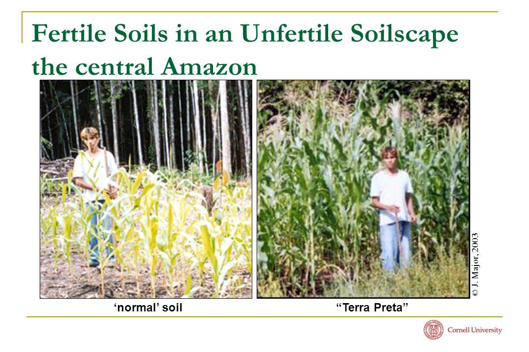 Fertile Soils in an Unfertile Soilscape the central Amazon © J.