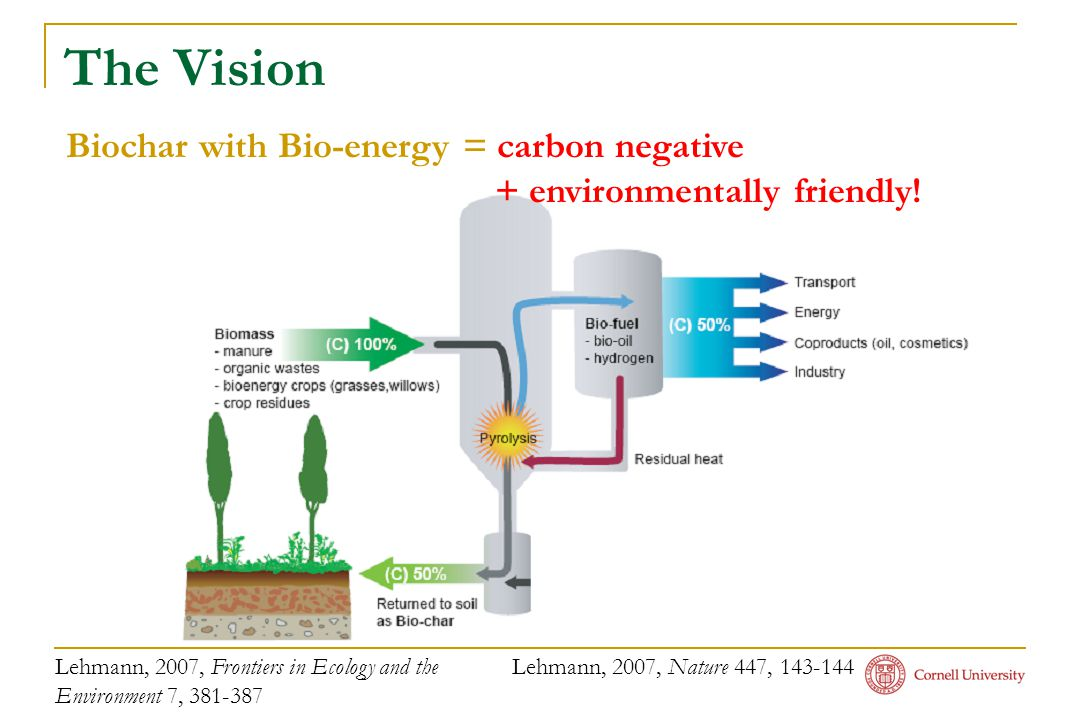 The Vision Biochar with Bio-energy = carbon negative + environmentally friendly! Lehmann, 2007, Frontiers in Ecology and the Environment 7, 381-387 Le