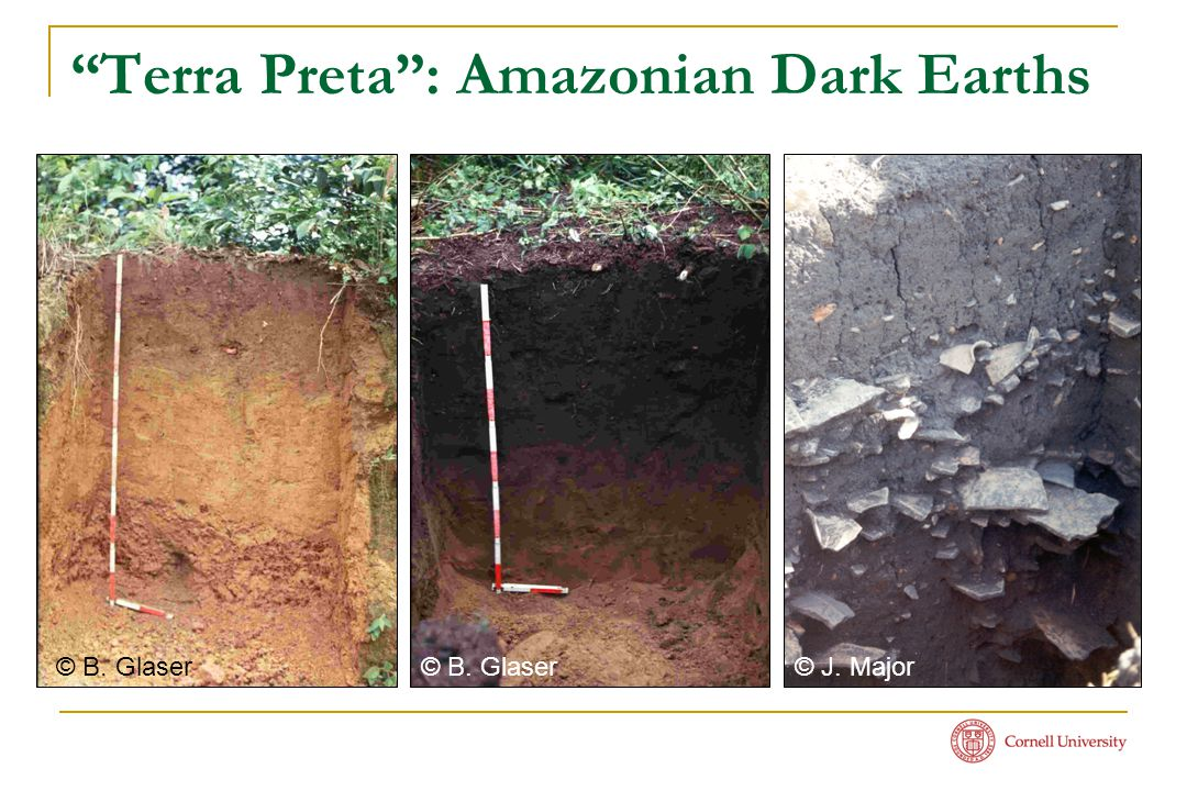 """Terra Preta"": Amazonian Dark Earths © B. Glaser © J. Major"