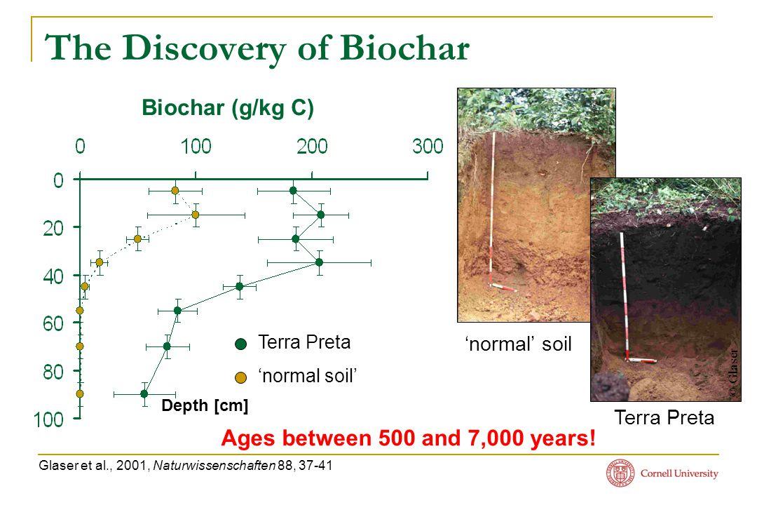 The Discovery of Biochar Terra Preta 'normal soil' Glaser et al., 2001, Naturwissenschaften 88, 37-41 © Glaser Terra Preta 'normal' soil Depth [cm] Ages between 500 and 7,000 years.